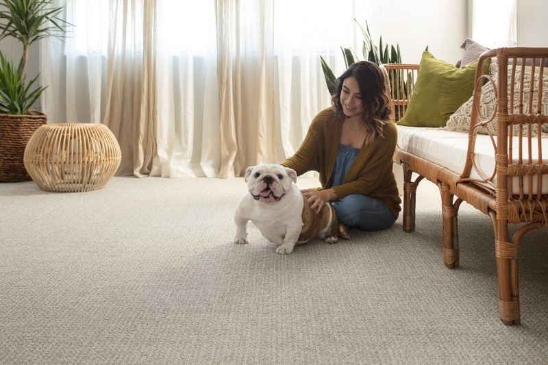 Pet friendly floor | Chillicothe Carpet
