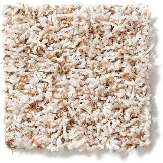 Carpet twist | Chillicothe Carpet