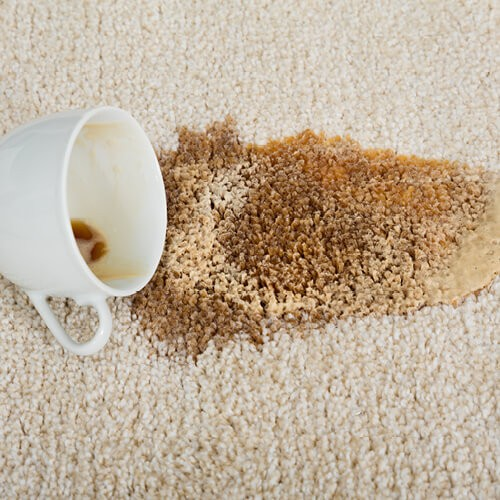 Stain on Carpet | Chillicothe Carpet