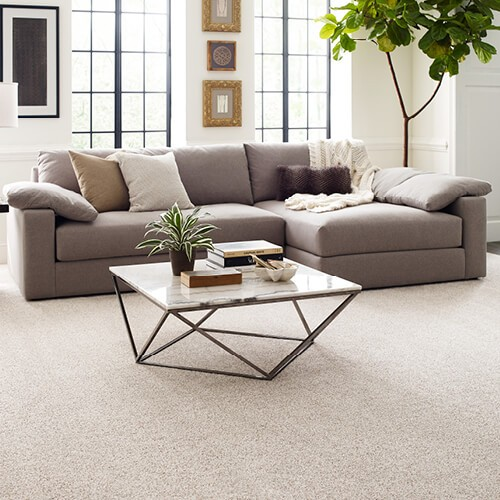 Carpet in living room | Chillicothe Carpet