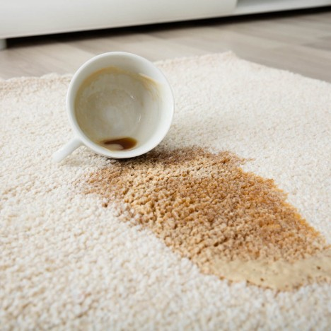 Coffee spill on area rug | Chillicothe Carpet